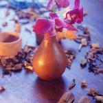 Oils and spices for ayurveda massages